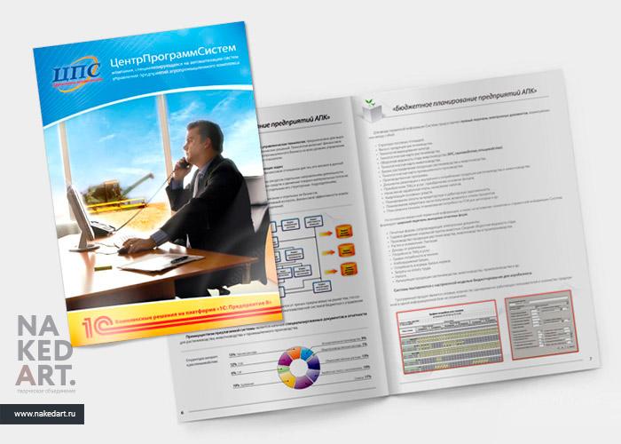 Дизайн буклета фирмы «Центр Программ Систем» пример