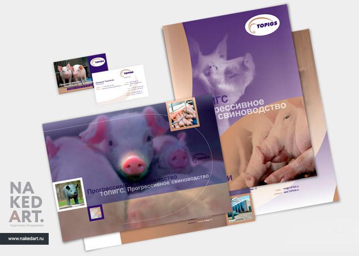 Дизайн буклета для компании «Топигс» пример
